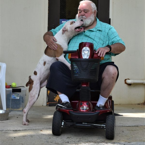Harley with Tom on scooter